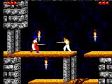 Prince of Persia SEGA Master System Fencing with a guard