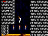 Prince of Persia SEGA Master System A great fall