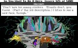 Hero's Quest: So You Want To Be A Hero DOS Visiting 'Enry the hermit