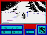 Downhill Challenge ZX Spectrum A single flag this time