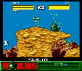 Worms SNES Kill the enemy worms!