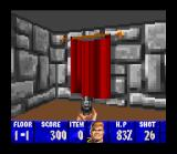 Wolfenstein 3D SNES No swastikas for Nintendo