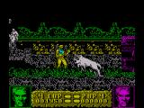 Altered Beast ZX Spectrum Time your kick carefully when attacking the white beast