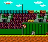 Disney's TaleSpin NES I never did like baseball...