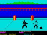 Ninja ZX Spectrum Combat - there's an Idol beyond the guy on the right