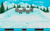 Winter Challenge: World Class Competition Atari ST Biathlon: shooting the targets