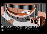 Mindshadow Atari 8-bit Anything useful inside the hut?