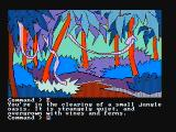 Mindshadow PC Booter Exploring a jungle (CGA with composite monitor)