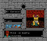 Tombs & Treasure NES Fighting the Snake Master.