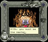 Dragon Warrior Monsters Game Boy Color Your journey into the other world begins