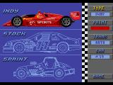 Mario Andretti Racing  Genesis Here you can choose the type of racing, color of your car, type of transmission and car number.