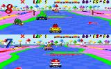 Skunny Kart DOS The game in two player mode