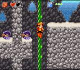 Super Adventure Island II SNES Climbing down a rope