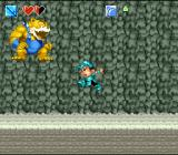 Super Adventure Island II SNES Mid-bosses like this one usually guard important items