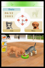 Nintendogs Nintendo DS Dogs can share!