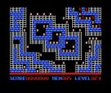 "Championship Lode Runner MSX Here is one by <moby developer=""Pac Fujishima"">Pac Fujishima</moby>."