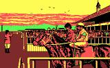 Omni-Play Horse Racing DOS Ready to begin a race? (CGA)
