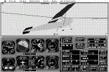 Microsoft Flight Simulator Macintosh closeup of Cessna
