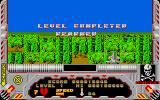 Hellfire Attack Atari ST Level complete