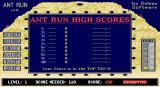 Ant Run DOS High score table