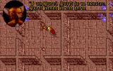 Ultima VII: Part Two - The Silver Seed DOS Ahhhh Origin and their wacky cross-series references...