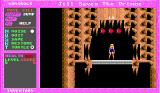 Jill of the Jungle: Jill Saves the Prince DOS Guys, this is not level 0, it's level 12.