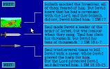 Davidic Matchup DOS Information on the cards' undersides