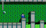 Mega Man 3: The Robots are Revolting DOS Don't fall in the acid, it could be bad for your health