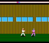 Karateka NES A tougher guard in the castle