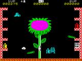 Pssst ZX Spectrum And the full plant soon follows