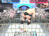 WWF Smackdown! 2: Know Your Role PlayStation Taking part in a cage match.