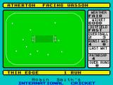 Robin Smith's International Cricket ZX Spectrum Lucky this didn't go in the air