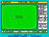 Robin Smith's International Cricket ZX Spectrum 'Third man' is one of many idiomatic fielding positions in cricket