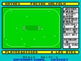 Robin Smith's International Cricket ZX Spectrum This doesn't happen too often