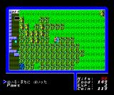 Ultima I: The First Age of Darkness MSX Outside the town of Paws