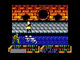 Teenage Mutant Ninja Turtles Amstrad CPC Mousers