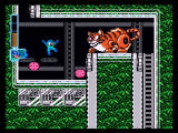 Mega Man: Anniversary Collection PlayStation 2 This giant cat blocks your path - defeat him and dodge its hairballs!