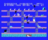 Hustle! Chumy MSX Beware of the rabbit