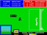 Daley Thompson's Super-Test ZX Spectrum Pick that one out