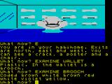 The Worm in Paradise ZX Spectrum Another important code