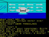 The Worm in Paradise ZX Spectrum My possessions