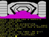 The Worm in Paradise ZX Spectrum 'Didgusting Junction' sounds like a 3-chord punk-pop band