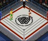 Super Fire Pro Wrestling Queen's Special SNES Fight starting