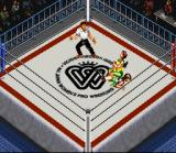 Super Fire Pro Wrestling Queen's Special SNES Half crab. As usual, there are a lot of submissions moves available.