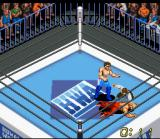 Super Fire Pro Wrestling X Premium SNES Some fights might end with one of the fighters passed out. MMA fighters are experts on this (and in only 11 seconds).