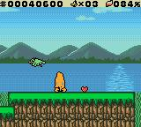 "Daffy Duck: ""Fowl Play"" Game Boy Color Enemies include birds that poo on you."