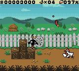 "Daffy Duck: ""Fowl Play"" Game Boy Color Daffy chucks a stick of dynamite at a chicken that's rolling eggs at him."