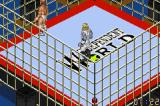 Fire Pro Wrestling 2 Game Boy Advance The cage flickers as one of the fighters goes face first into it. Zaaap!