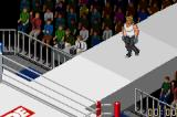 Fire Pro Wrestling 2 Game Boy Advance Gruesome matches, with a catwalk to the rink