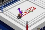 Fire Pro Wrestling 2 Game Boy Advance Weren't these outlawed a few years ago? Or does everything really go?